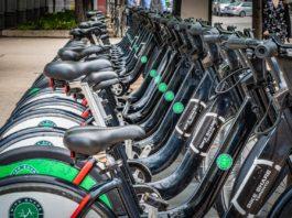 La svolta green degli enti locali: Padova acquista verde