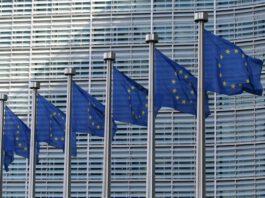 """""""Per essere circolari al 2050 servono target vincolanti"""". La risoluzione al Parlamento Ue"""