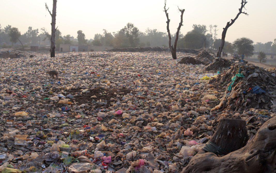 I danni della plastica